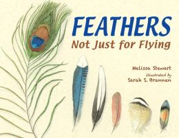 Feathers- Not Just for Flying by Melissa Stewart