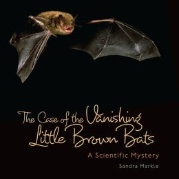 The Case of the Vanishing Little Brown Bats- A Scientific Mystery
