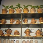 Mandrakes and gobin heads. Not exactly how we'd decorate our own bookshelves at home.