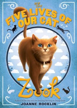 five-lives-of-our-cat-zook