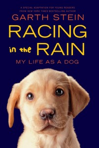 racing-in-the-rain_my-life-as-a-dog
